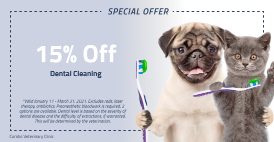 dental saving coupon